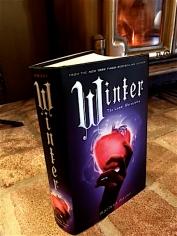 WinterCover